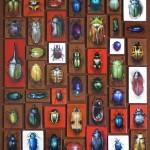 Beetle Cabinet '07 (52x60)