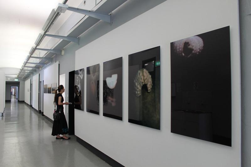 Grad Show 2010 Installation