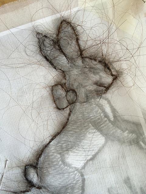 Hair Rabbits (detail)