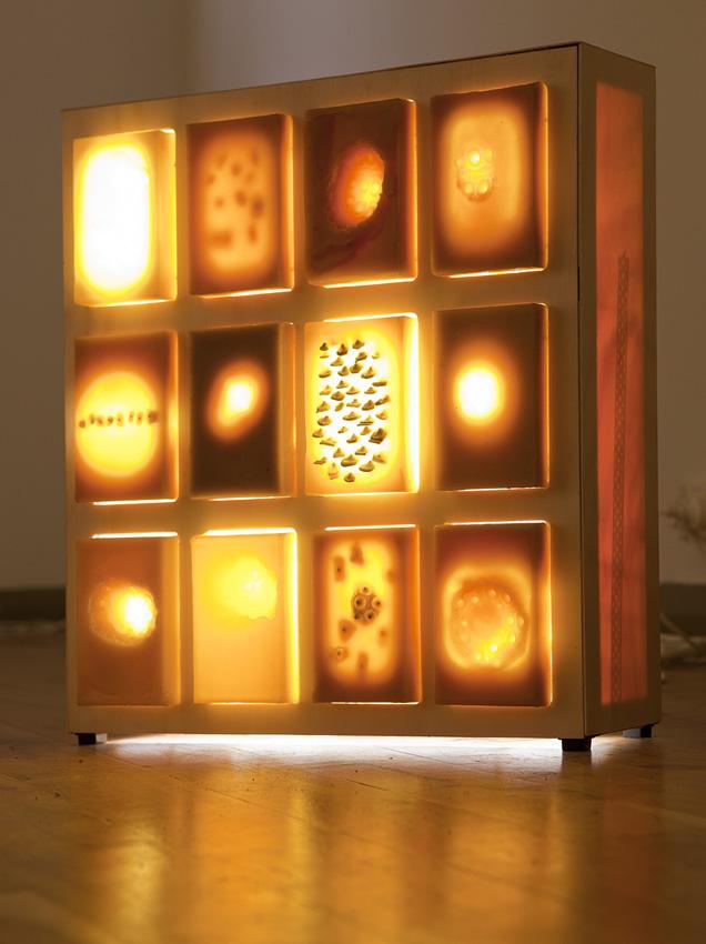 Stilled Life, Urchin Box