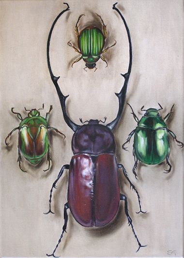 Chafer Beetles. 2007.