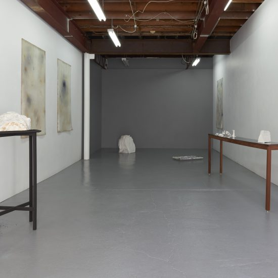 General installation view Sylvia Griffin Second Skin