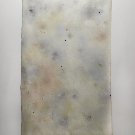 Sylvia Griffin pigment painting Second Skin